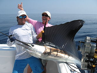 Salt Water Sportsman - Costa Rica Fishing at Los Suenos and Jaco Beach