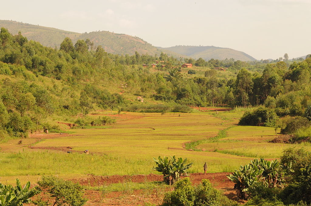Countryside close to Gitega (6908580277)