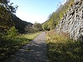 Course of Midland Railway through Chee Dale - geograph.org.uk - 1081591.jpg
