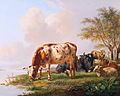 Cows and sheep at the river bank, by Pieter Gerardus van Os (Den Haag 1776 - 1839).jpg