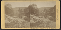 Creek and distant view of R.R. Bridge, at Rosendale, N.Y, by D. J. Auchmoody.png