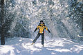 Cross-Country skiing in Gatineau Park.jpg