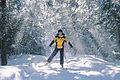 Cross-Country skiing in Gatineau Park.jpg