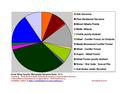 Crow Wing Co Pie Chart Wiki Version.pdf