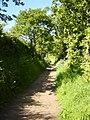 Cuckoo Lane, Little Neston - geograph.org.uk - 180550.jpg