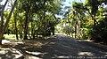 Cuvu, Fiji - panoramio (14).jpg