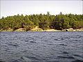 D'Arcy Island.jpg