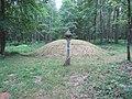 Dūkštų sen., Lithuania - panoramio (99).jpg