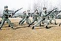 DM-ST-83-08406 Republic of Korea marines engage in bayonet training during Exercise Team Spirit '83.jpeg