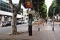 DSC-1547-Rothschild Boulevard-december-2017-tel-aviv-israel.jpg