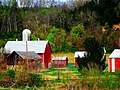 Danz Family Farmstead (Was My Grandparents Farm) - panoramio.jpg