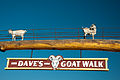 Daves Goat Walk (5113362835).jpg