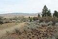 Davis Creek Park - panoramio (1).jpg