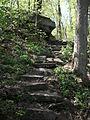 Delaware Water Gap National Recreation Area - Pennsylvania (5677816811).jpg