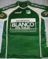 Deportivo Cali local 2011.jpg
