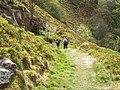 Descending towards Kex Beck - geograph.org.uk - 415058.jpg