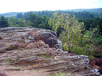 Devil's Jumps, Churt - Ironstone outcrop on the easternmost Jump