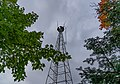 Devilfish Fire Lookout Tower - ARMER Radio Communications Relay, Minnesota (42843476780).jpg