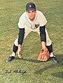 Dick McAuliffe 1966.jpg