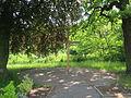 Dietrich Bonhoeffer garden 05 2014 009.JPG