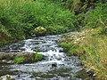 Divoká Šárka - panoramio (57).jpg