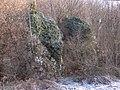 Dolina KJobylańska DK21.jpg