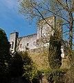 Donjon du château de la Tour-Blanche.jpg