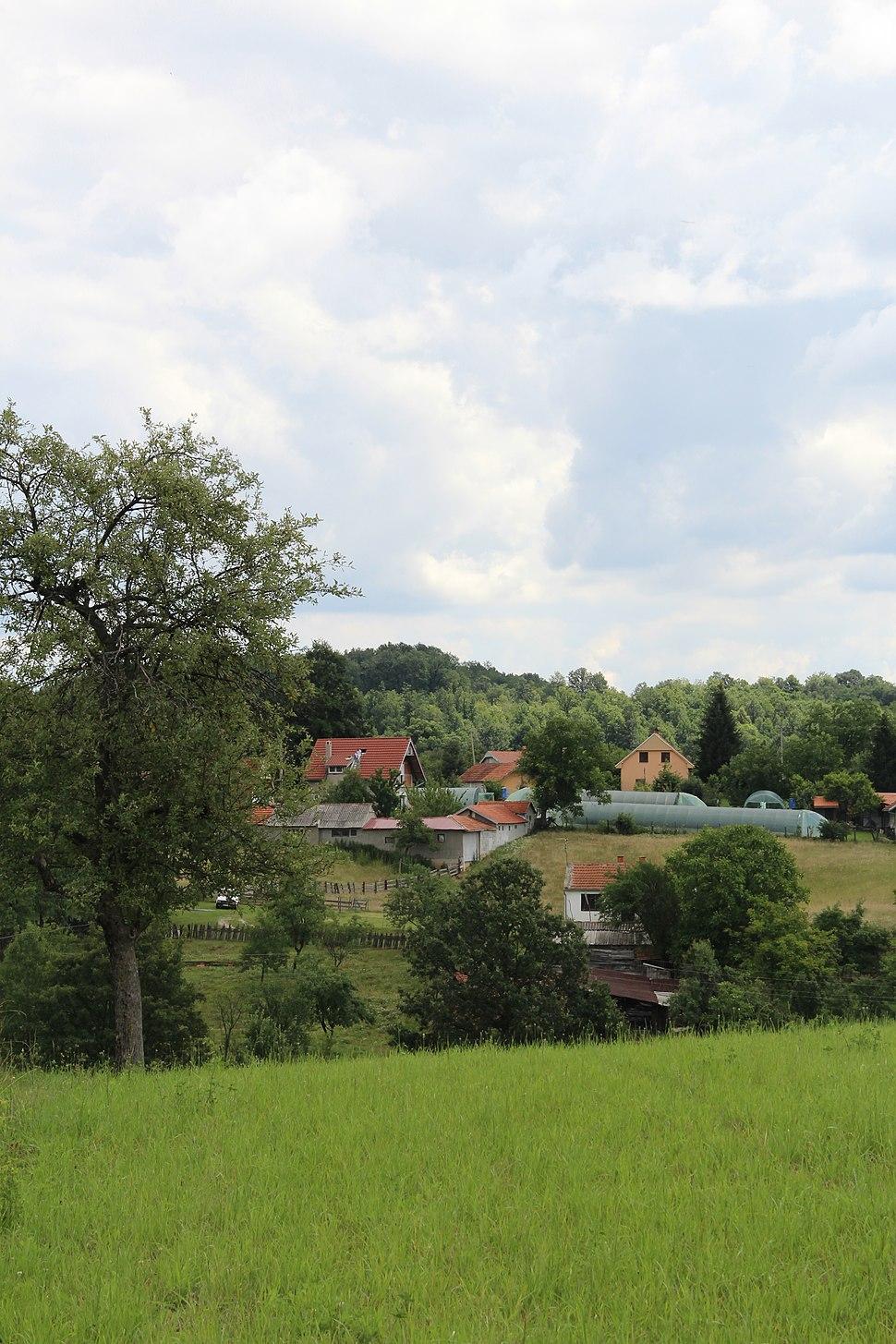 Dračić - opština Valjevo - zapadna Srbija - panorama 18