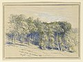 Drawing, Studies. Maple Grove, Greensboro, Vt., August 26, 1916 (CH 18368861).jpg