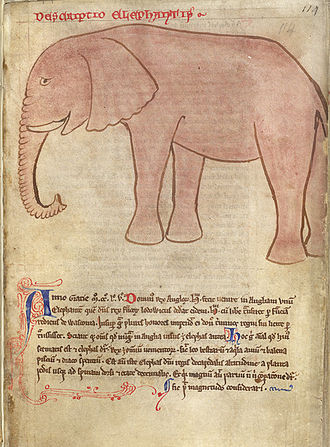 John of Wallingford (d. 1258) - Image: Drawing of an elephant, copied by John of Wallingford after Matthew Paris (1255) BL Cotton MS Julius D VII, f. 114r
