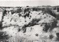Dune di Randello (4).png