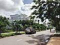 Duong Huynh tan Phat, ap Long Chau,Tx tanchau, Angiang,06-10-13-Dyt - panoramio.jpg