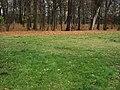 Dwa kolory - panoramio.jpg