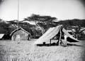 ETH-BIB-Camp Serengeti-Kilimanjaroflug 1929-30-LBS MH02-07-0321.tif