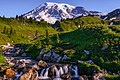 Edith Creek And Mt Rainier (232262491).jpeg
