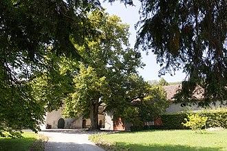 Luins - Image: Entrée du château de Luins (Suisse)