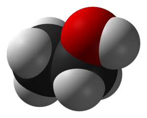 The approximate shape of a molecule of ethanol...
