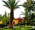 Ex Hacienda Molino de Flores caballerizas.JPG