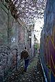 Exploring Edinburgh (32105816962).jpg