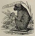 Fábulas de Samaniego (1882) (page 119 crop).jpg