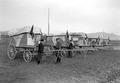 Fünf Brieftaubenwagen der Armee in Tarnfarben - CH-BAR - 3240989.tif