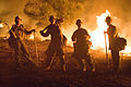 FEMA - 33657 - Firefighters on the line in California.jpg