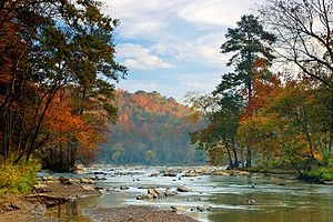 Chattahoochee River - The Chattahoochee River in Autumn
