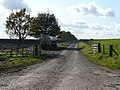 Farm road by the sea wall - geograph.org.uk - 1024063.jpg