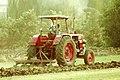 Farmer in Shubrakhit, Egypt 1.jpg