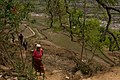 Farmers returning home from the field, Syangi district, Nepa.jpg
