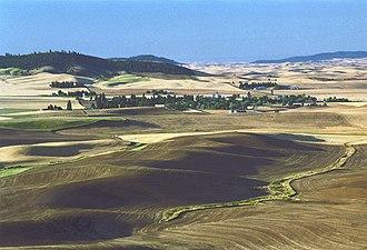 Whitman County, Washington - Image: Farmington wa autumn
