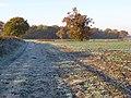 Farmland, Wokingham - geograph.org.uk - 616631.jpg