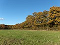 Farmland and trees, Crondall - geograph.org.uk - 282208.jpg