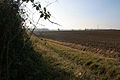 Farmland off Croxton Road, Saltby - geograph.org.uk - 595141.jpg